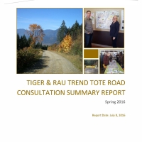 Tote Road Consultation Report